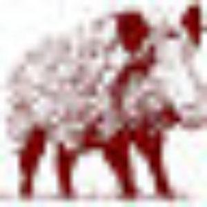 cropped-favicon-1-300x300